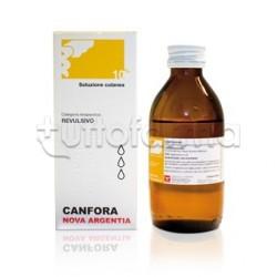 Canfora Soluzione Oleosa 10% 100 ml