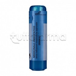 Boiron Pyrogenium 9CH rimedio omeopatico 70granuli
