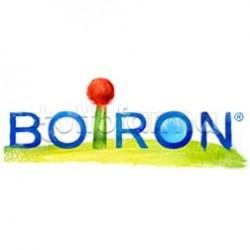 Boiron Magnesia Phosphorica 200K Monodose Globuli Omeopatici