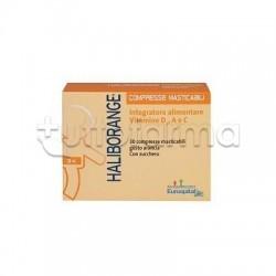 Haliborange Integratore Vitamina D per Sviluppo delle Ossa 30 Compresse Masticabili
