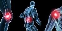 Arnica Compositum: rimedio naturale per lesioni muscolo-scheletriche
